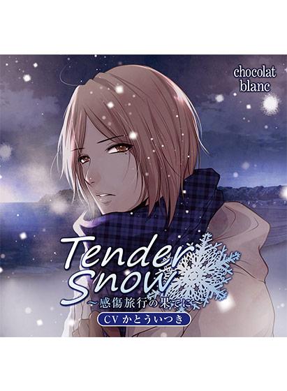 【エロゲー】Tender Snow 〜感傷旅行の果てに〜【CV:かとういつき】のトップ画像